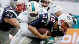 Paitoriots vs dolphins 2014